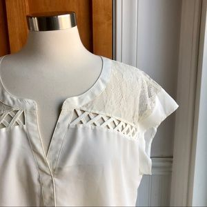 NWT Daniel Rainn Lacey Cream Blouse Top